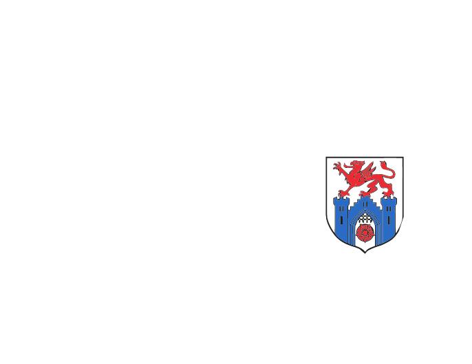 Pyrzycka Szkoła Muzyczna I st.